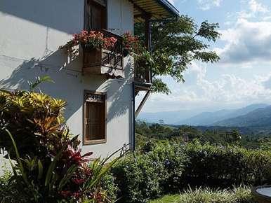 Café bio,Costa Rica, Tarrazu, Rio Jorco Estate