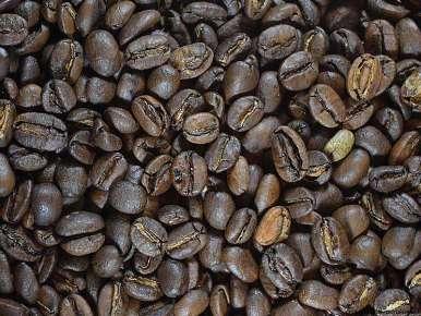 Echantillons gratuit de cafés terroirs